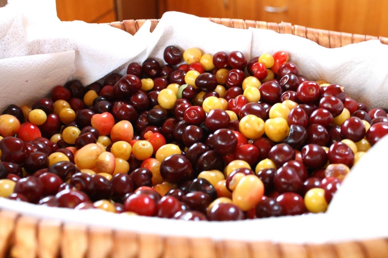 Cherries by Carolin Shining